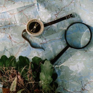#66. 当代探险家——走进植物学