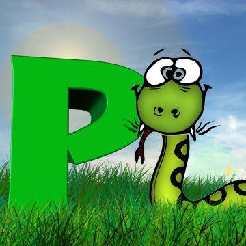 世界第一编程语言 Python