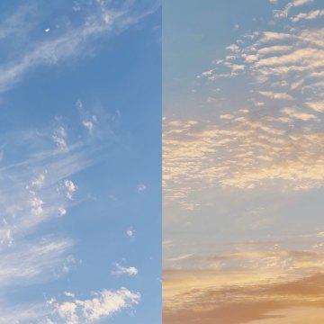 【闲聊】从《你当像鸟飞向你的山》到情绪失控