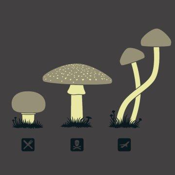 07 蘑菇蘑菇告诉我,30岁到底要什么?