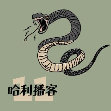 B2Ch11. 决斗俱乐部