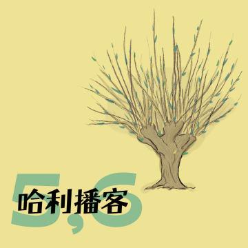 B2Ch5-6. 打人柳 + 吉德罗·洛哈特