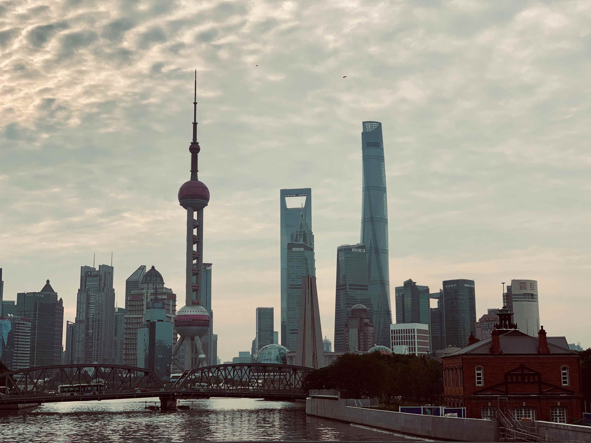 Shanghai | The Morning Vibe - Special Issue 001