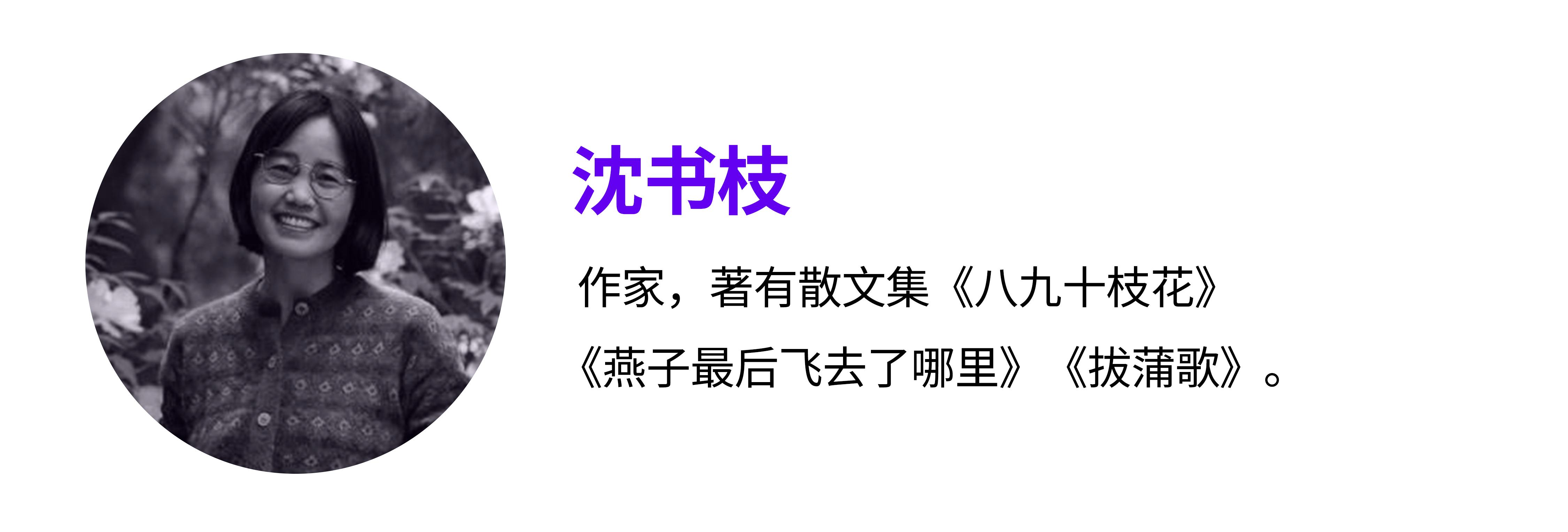 沈书枝.jpg