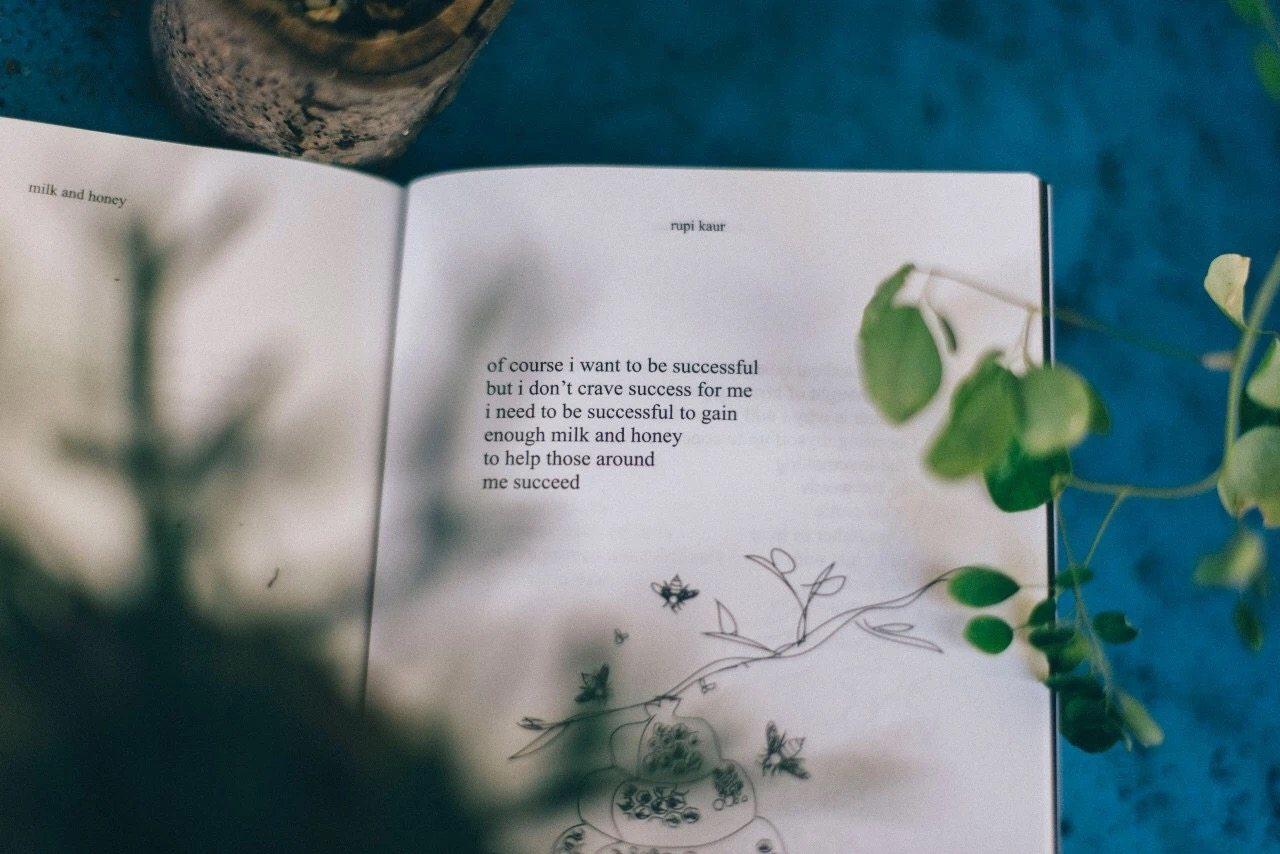 优质内容分享合辑|8月刊(2019)