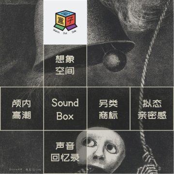 Box.017 Special Froms 声学特色杂货铺