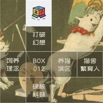 Box.012 务必三思啊之养猫(及任何活物)劝退指南