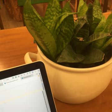 Xuewei's Blog